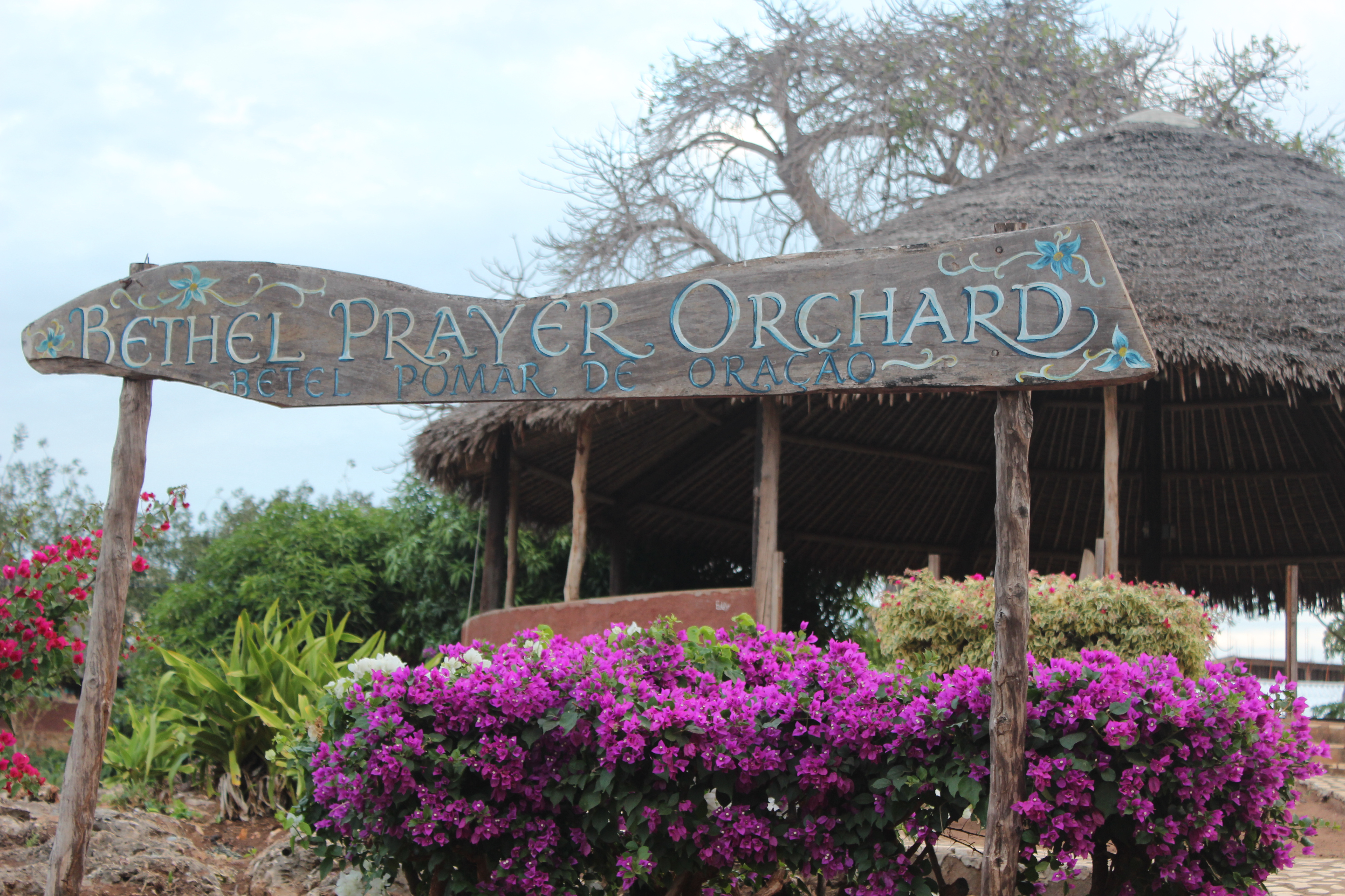 Prayer Garden, Iris Ministry base, Pemba, Mozambique